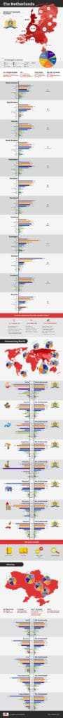 Software Developer Engineer Infographic