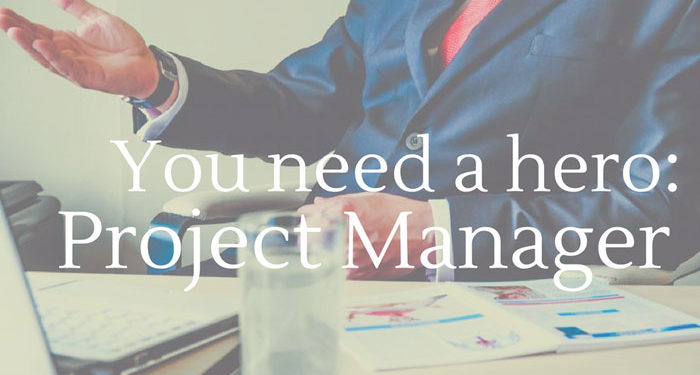 You-need-a-hero-the-project-manager