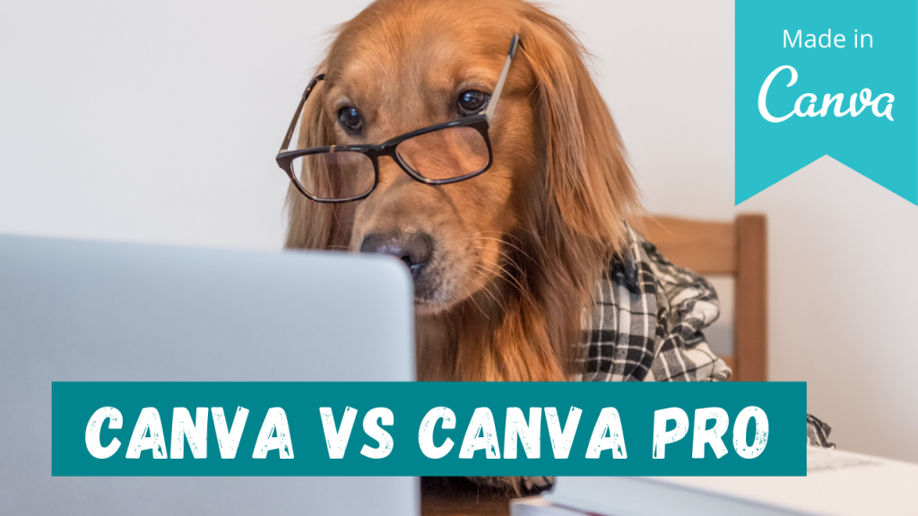 Canva vs Canva PRO