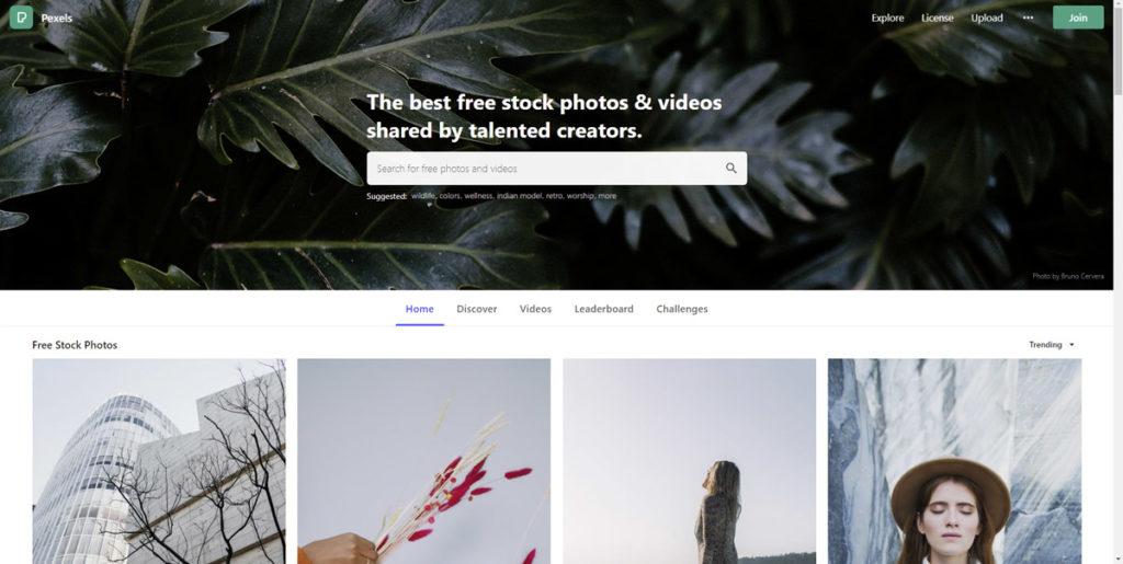 Pexels-Stock-Fotos
