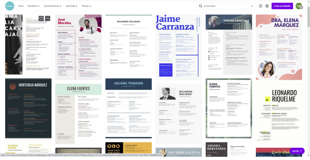 Resume-examples-canva