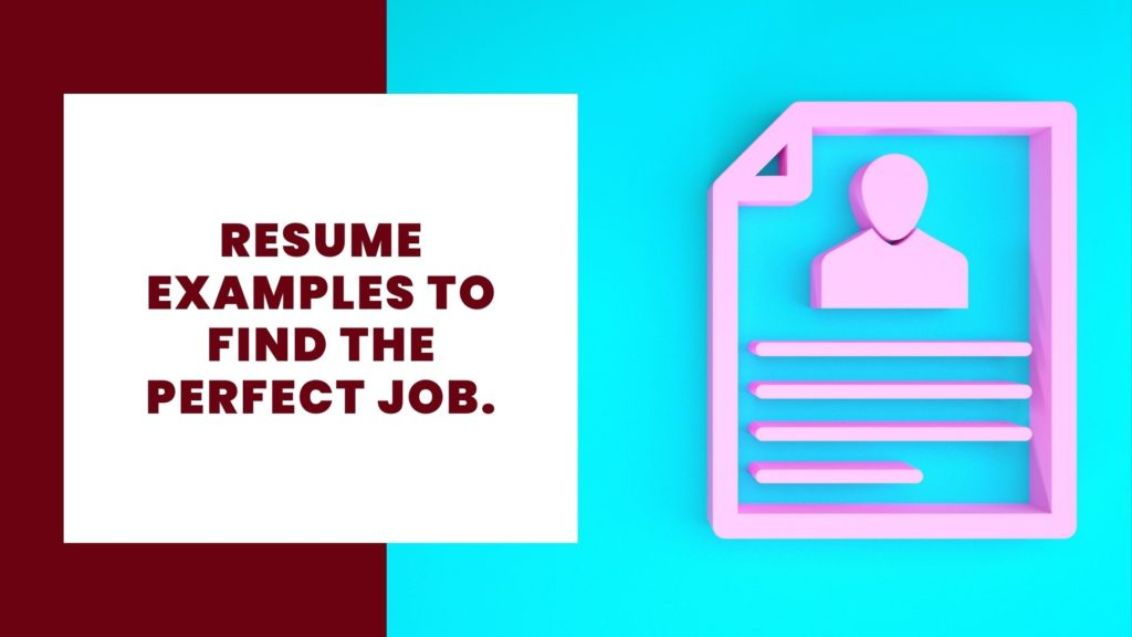 Resume examples to find the perfect job